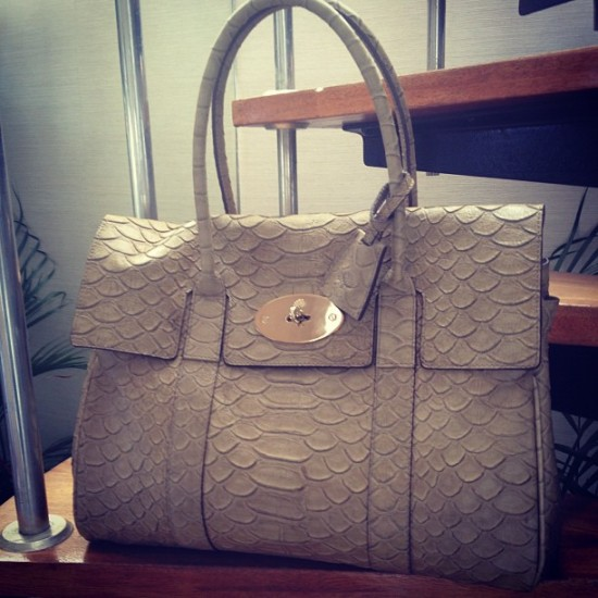 Mulberry Bayswater Silky Snake