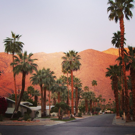 I Loved Palm Springs…