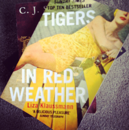 tigers in red weather summer read
