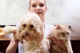 Sunday Tittle Tattle: Meet My Pets
