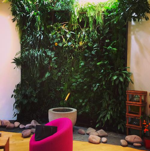 weleda espace living wall