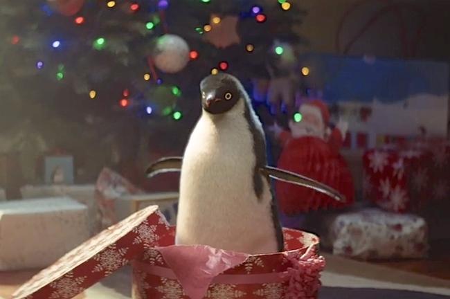 watch monty the penguin