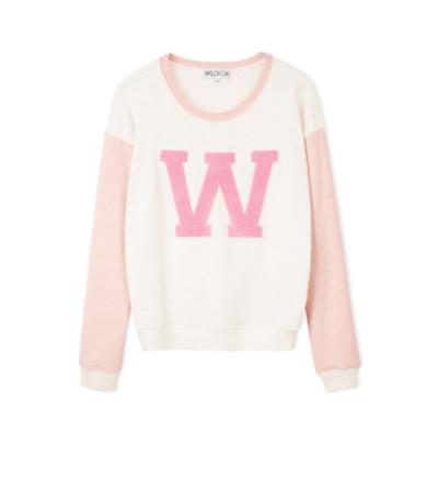 wildfox cheer squad sweatshirt