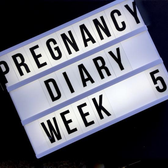 early pregnancy diary week 5