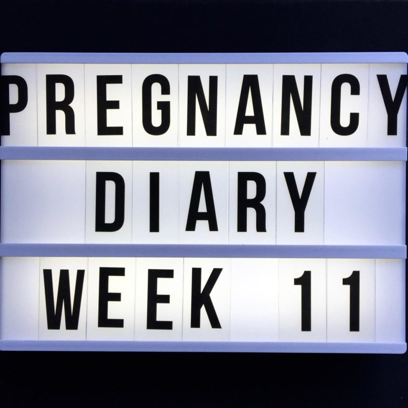 early pregnancy diary