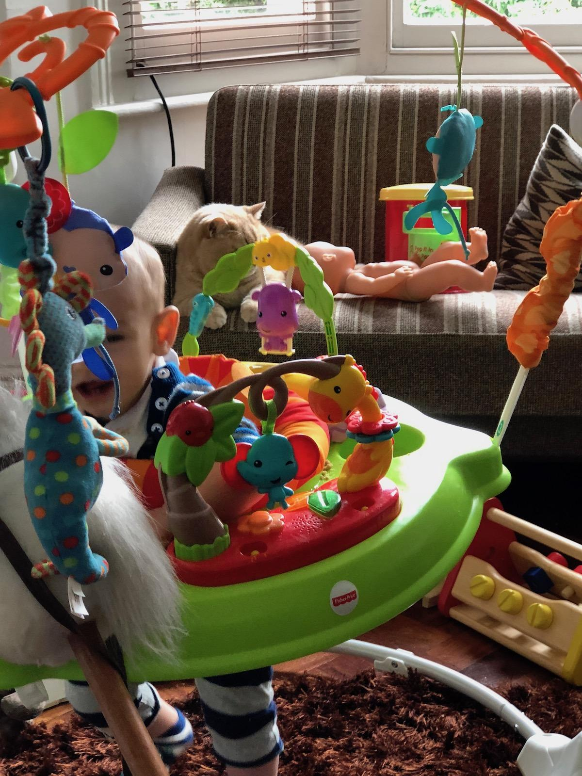 fisher price jumperoo review