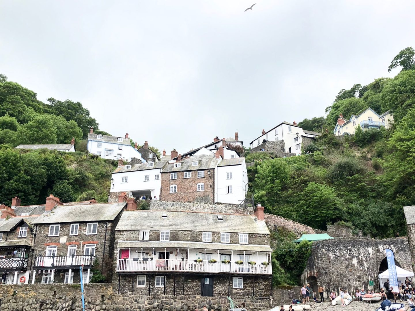 ruth crilly walking clovelly