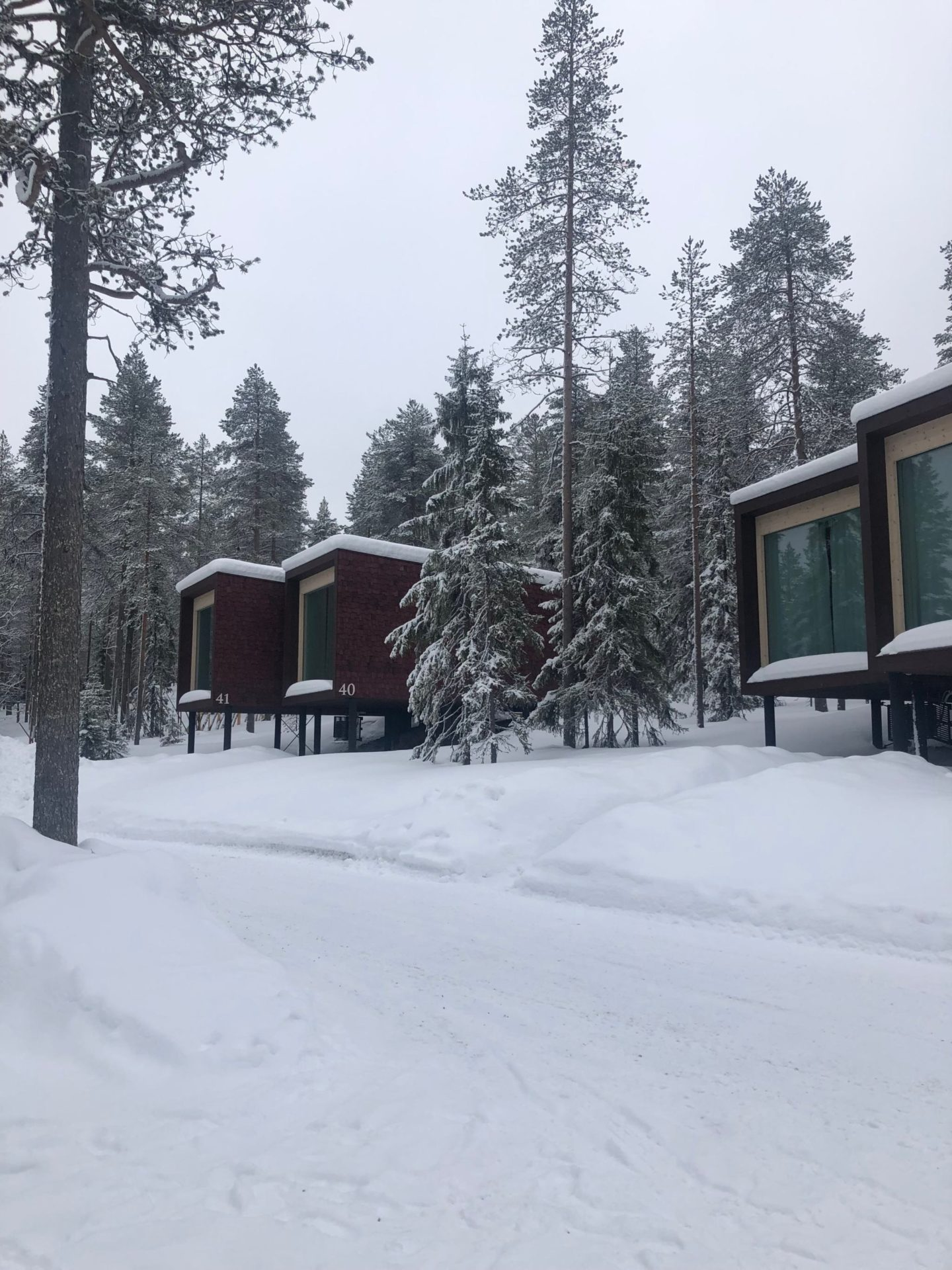 arctic treehouse hotel review